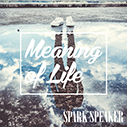 SPARK SPEAKER/Meaning of Life(通常盤)