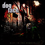 DOGFACE/Back In The Streets