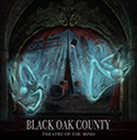BLACK OAK COUNTY/Theatre Of The Mind